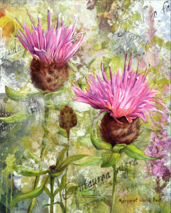 Roots of Migration Knapweed